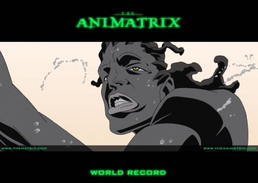 Аниматрица: Мировой рекорд